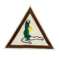 Gymnastics Brownie Badge...council's own badge from Girl Scouts of Western Pennsylvania