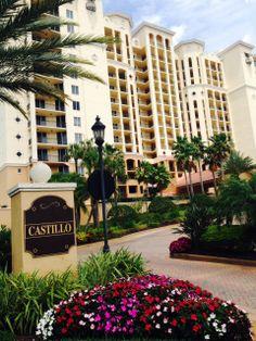 Castillo spring Annuals #FloridaLiving