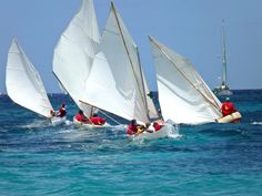 #mustsailcaribbean hashtag on Twitter