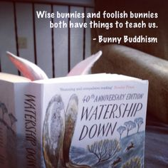 Wise bunnies and foolish bunnies both have things to teach us. - Bunny Buddhism