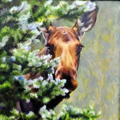 Spruce Moose oil painting artist, Sonia Reid featured at Spirits in the Wind Gallery www.spiritsinthewindgallery.com