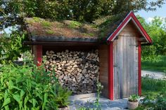 Small hut in the garden with a small slate path and a moss laden roof with a stack of undercover firewood