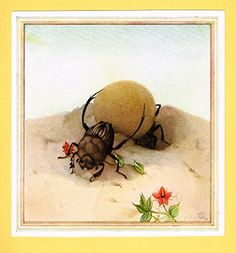 """Detmold's Fabre's Book of Insects - """"The Sisyphus"""" - Lithograph - 1921"""