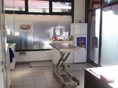 Veterinario, articoli per animali, servizio urgenze, Pet-Shop, vaccinazioni, sterilizzazoni, Lugano, Davesco