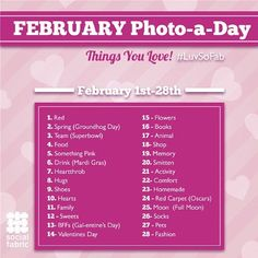 February Photo A Day Challenge from SoFab #luvsofab