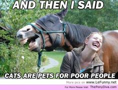 And Then I Said… - http://theponydiva.com/and-then-i-said/