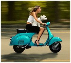 Scooter Girl & Dog