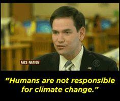 global warmin essay