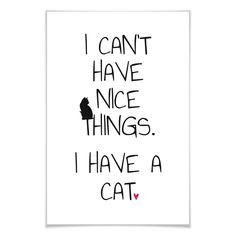 Typografie Poster - I can't have nice Things - Cat - Katzenliebhaber können darüber lachen!