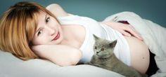 Cuidados durante a gravidez: quatro regras para evitar a toxoplasmose