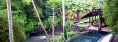 The Panchoran Retreat, Ubud Bali Dream Vacations, Vacation Spots, Bali Spa, Yoga Retreat, Bali Retreat, Beautiful Places To Travel, Best Hotels, Amazing Hotels, Ubud