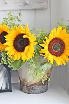 Love Sunflowers !!!