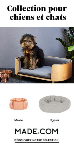 Comfortable pet bed with a stylish look, you and the furriest member of your family will love it. It'll fit your Jack Russel, French Bull Dog or Beagle perfectly. Yorkie, Animals And Pets, Baby Animals, Cat Furniture, Cool Pets, Animal Design, Cat Toys, Dog Bed, Animal Photography