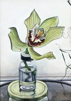 Green Orchid Green Orchid, National Portrait Gallery, Art Themes, Art School, Still Life, Orchids, Flowers, Painting, Artists