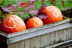 Perhaps have these at the front door, or even have it located some where in the house.  Pumpkin initials. Fall wedding decor ideas.