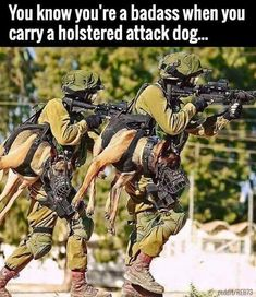 You know you're a badass when you carry a holstered attack dog. Search for Fun - Funny Clone Meme 2018 You know you're a badass when you carry a holstered attack Military Working Dogs, Military Dogs, Military Humor, Military Life, Military Service, Police Dogs, Military Army, War Dogs, Humor Militar