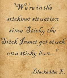 """""""We're in the stickiest situation since Sticky the stick insect got stuck on a sticky bun."""" ― Captain Blackadder, Blackadder Goes Forth. Clearly the greatest quote of all time. British Sitcoms, British Comedy, Blackadder Quotes, Me Quotes, Funny Quotes, British Humor, Comedy Tv, Make You Smile, Favorite Tv Shows"""