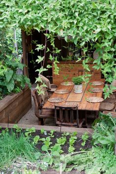 raised beds surrounding the outdoor dining area.