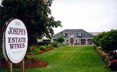 Joseph's- Niagara Vineyard :)