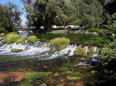 Giant Springs - Great Falls Montana by dctim1, via Flickr