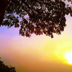 Bom dia frio e um ótimo fim de semana!   Good cold day and a wonderful weekend! .  .  .  .  #goodmorning #goodmorningworld #goodmorningfriends #newday #saturday #weekend #winteriscoming #Ilovecold #brazilianlandscape #thesun #morning #sunshine #cold #winter #instapic #instalike #instaclick #follow4follow #followvack #instalove #instacolors #loveforpic #visualarts #Bahia #Brazil
