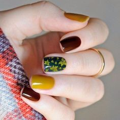 A beautiful and full manicure in autumn colors. Fingers with such design look fresh and original through a combination of brown and dark brown colors. A picture of yellow maple leaves applied over a dark green nail on one finger, recalls that soon will be the autumn leaf fall. This option of drawing on nails is perfect for every outfit, and will come in handy at any event.