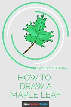Easy to follow step-by-step tutorial to drawing a maple leaf. Follow the simple instructions and in no time you've created a great looking leaf.