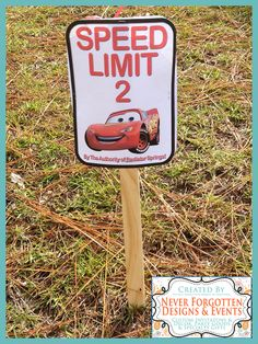 "Photo 1 of 13: Disney Cars Lightening McQueen / Birthday ""Cars 2nd Birthday Party"" 
