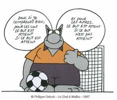 le_chat_et_le_foot