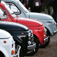 #500 #fiat #fiat500 #cinquecento #cinquino #italy #italia #car #cars #beautycars #instacar #instacinquecento #insta500 #fiat500cinquecento #igers #igers500 #igerscar #retroautos #retrocars #500love #love500 #thehappycar #500happypeople @Regranned from @shuff69