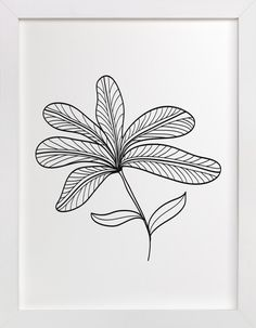 5 leaves by aticnomar at minted.com