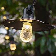 S14-LED-Warm-White-Bulbs-Black-Patio-Wire-Copper-Shades-5191.jpg (555×555)