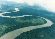 rio nilo   ... fotografia se encuentra el rio nilo y posteriormente el rio amazonas