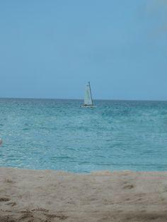 Hobie wave sailing in 7-mile beach in Negril, Jamaica