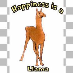 Happiness is a Llama.jpg