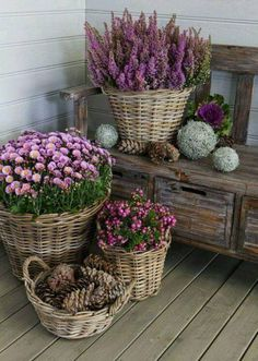 Pretty flower baskets