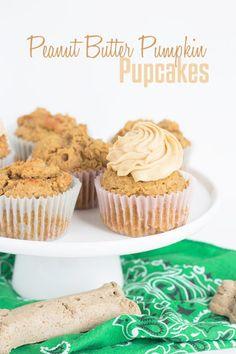 Peanut Butter Pumpkin Pupcakes Dog Frosting Recipe, Cupcakes For Dogs Recipe, Dog Cake Recipes, Dog Cupcakes, Dog Treat Recipes, Dog Food Recipes, Baby Recipes, Yummy Recipes, Baking Recipes