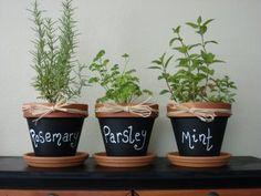 garden grow ... rosemary, parsley, mint