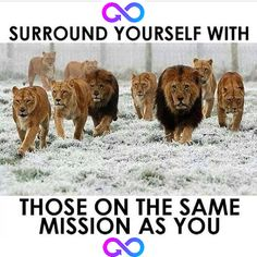 Surround yourself with others that are highly motivated.