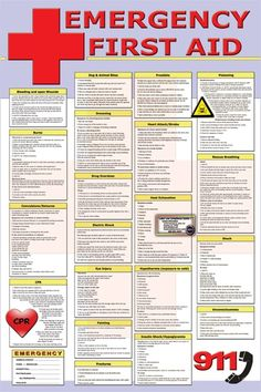 Emergency First Aid Poster This 24 X 36 Poster explains First Aid procedures to take in various situations. Below is a list of those situations: Bleeding and Open Wounds Burns Convulsions / Seizures… Burns, Best Practice, Macros Dieta, First Aid Poster, First Aid Cpr, Emergency First Aid, Family Emergency, Emergency Response, Cervical Cancer