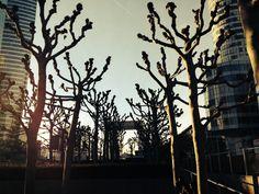 La Défense - Foto: Arquiteta Cláudia F. Ferreira