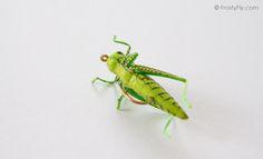 Realistic Green Grasshopper