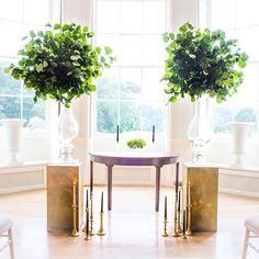 Green elegance for @rockbearemanor #green #wedding #elegant #weddinginspiration #weddingstyle #photography #weddingceremony #style #flowerstyling #photostyling #foliage #weddingvenue