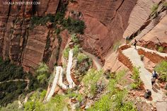 West Rim Trail (15 Best Hikes in Zion National Park).