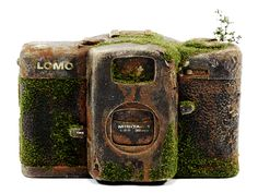 "100 YEARS LATER ""LOMO"" by Maico Akiba"