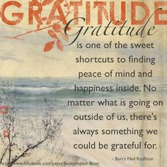 For peace of mind and happiness practice gratitude.