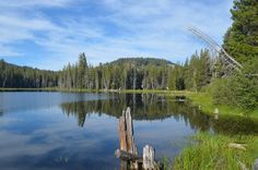 Tales from the Adventure Wife: Miller Lake, CA