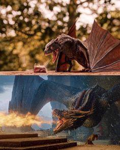 got gotmemes gameofthrones gameofthronesmemes memes meme memesdaily dailymemes dailymeme nichememes nichememe nichememesdaily dany drogon dragon hangry Drogon Game Of Thrones, Game Of Thrones Dragons, Got Dragons, Mother Of Dragons, Game Of Thrones Brasil, Arte Game Of Thrones, Game Of Thrones Quotes, Daenerys Targaryen, Khaleesi