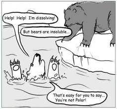 Water-soluble polar bear needs help.