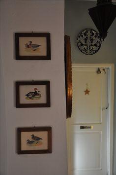 Ducks Ducks, Tuscany, Gallery Wall, Frame, Home Decor, Homemade Home Decor, Tuscany Italy, A Frame, Frames